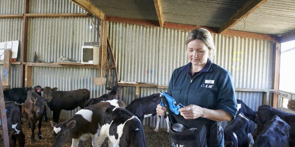 Animal health & DNA testing