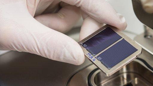 DNA Parentage testing