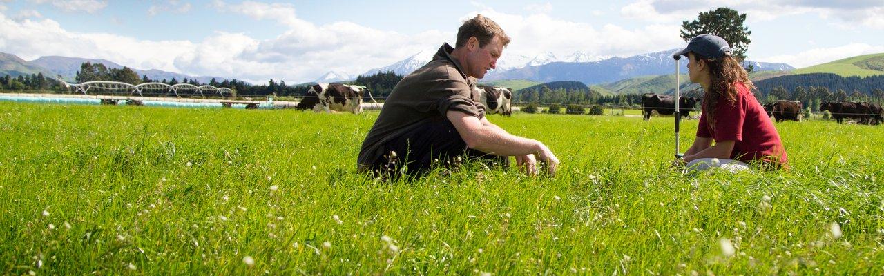 Farmers sitting in grass