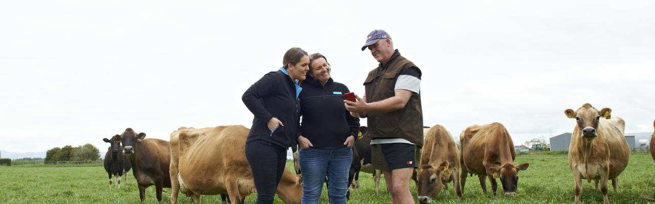 Agri Manager and Farmers - Ngatea