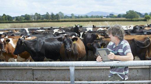 LIC Orini farmer with ipad