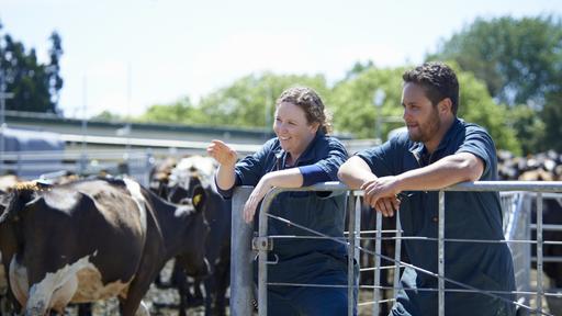 vet & farmer-Innovation farm