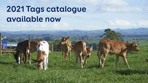 Publications-tagscatalogue2021.jpg