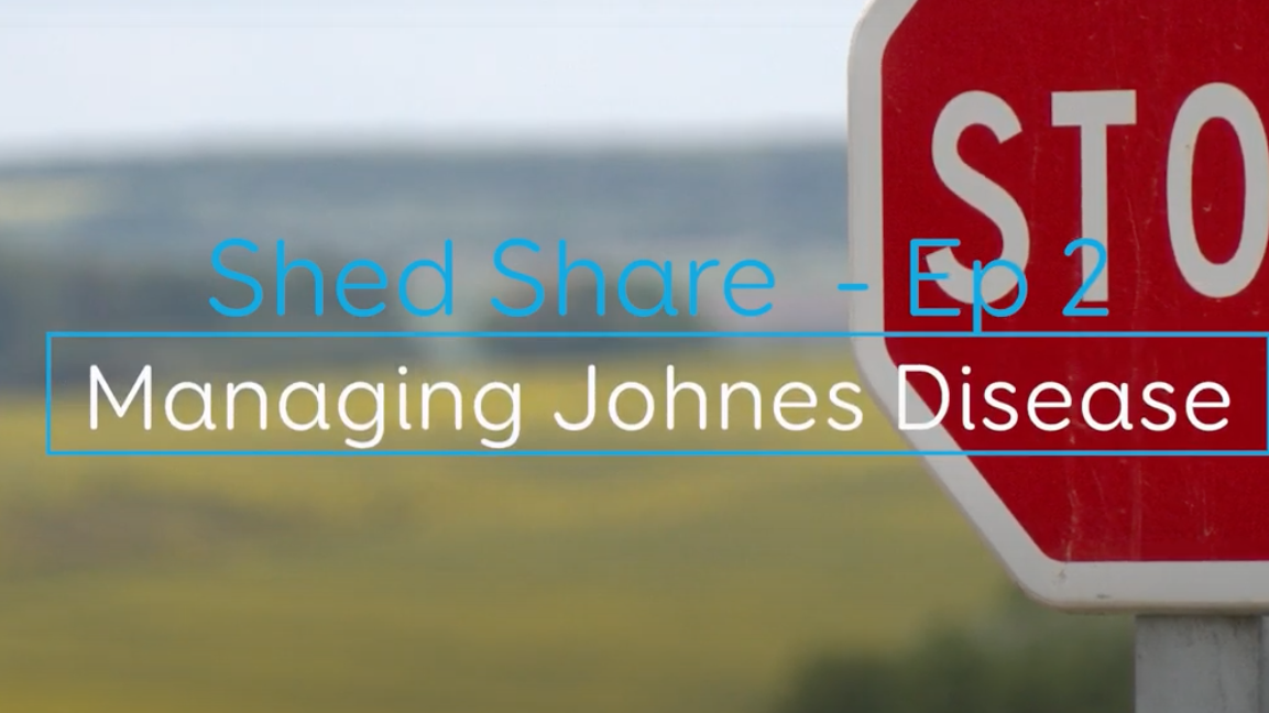Shed Share JD 3