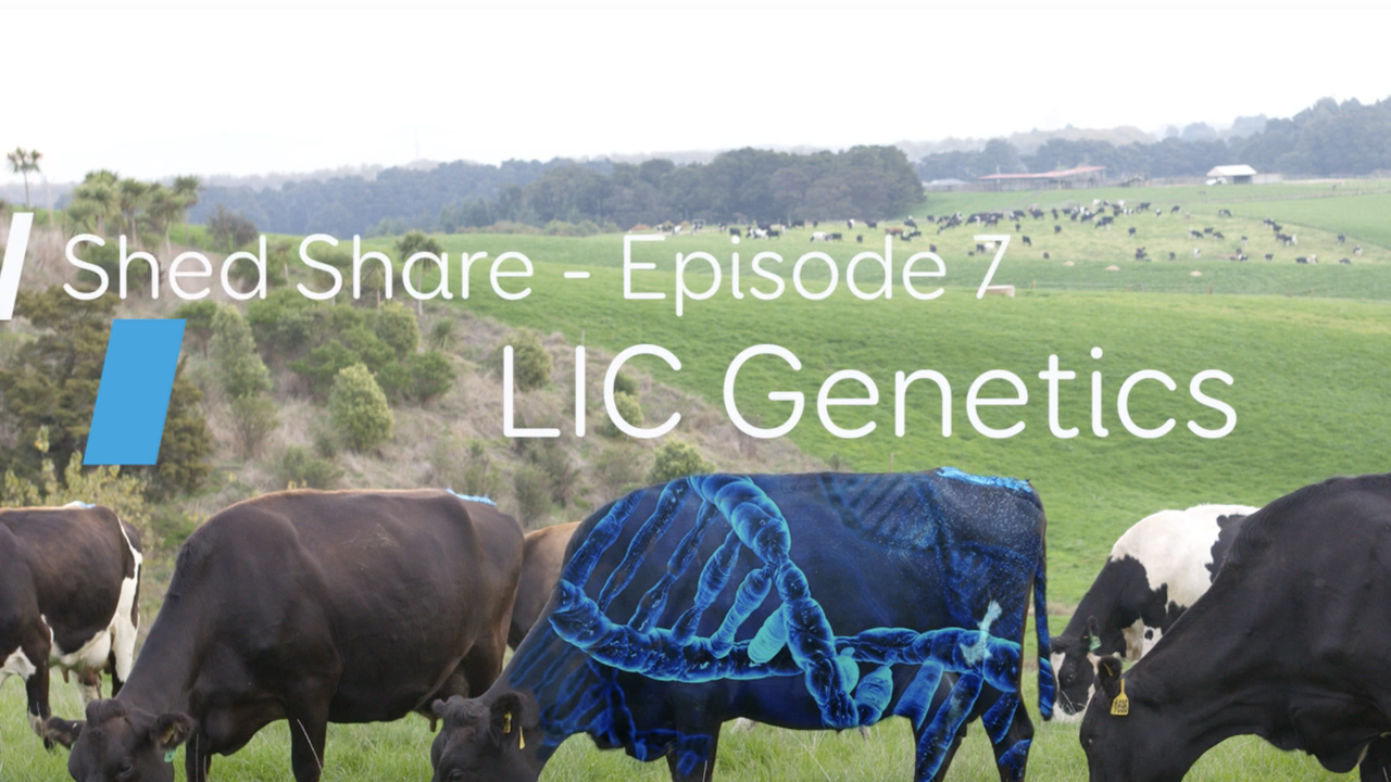 Shed Share - Genetics