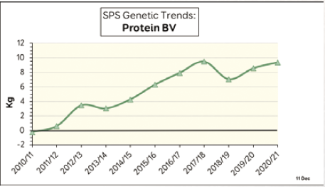 Bulletin 2021 SPS genetic trends protein bv