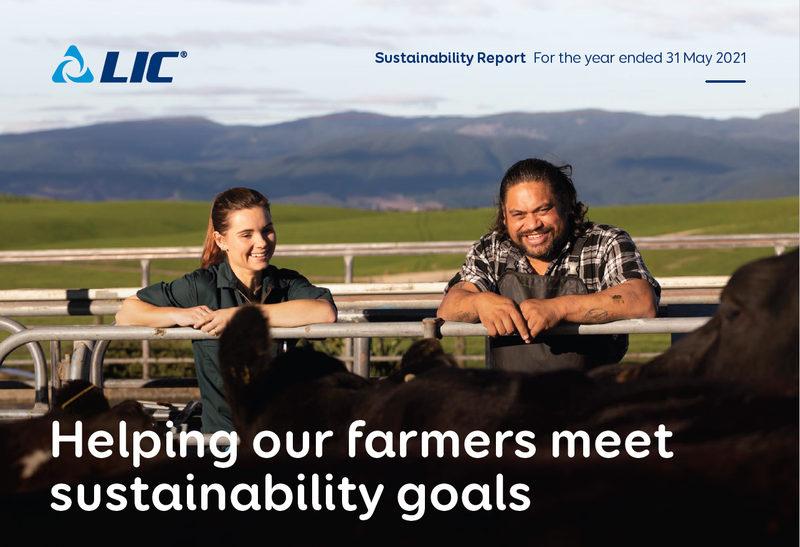 Sustainability report website.png