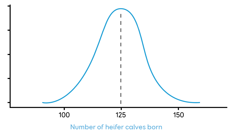 AB Heifer calves