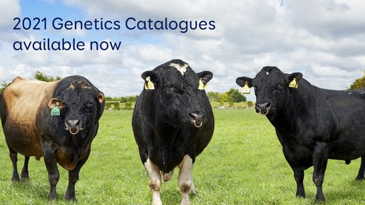 2021 Genetics Catalogues thumbnail.jpg