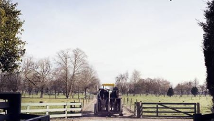 Newstead farm
