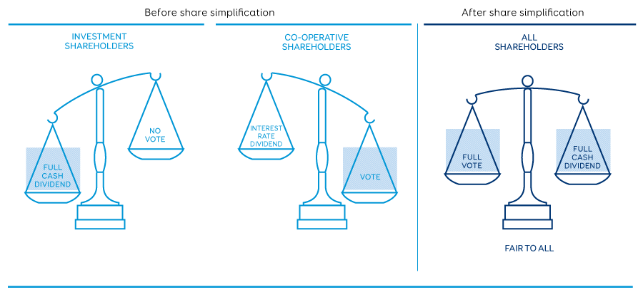 Share simplification graphic scales